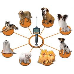 Estrus detector for dogs